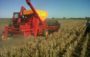 Cosechadora de granos de arrastre